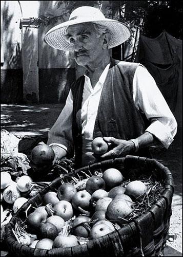 Guido Sabbatini - Il fruttivendolo anni '70